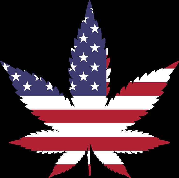 marijuana-2766322_1920.png